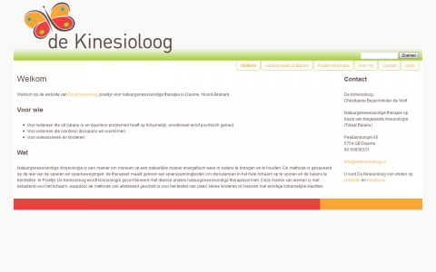 Website ontwerp De Kinesioloog door tsiis websites